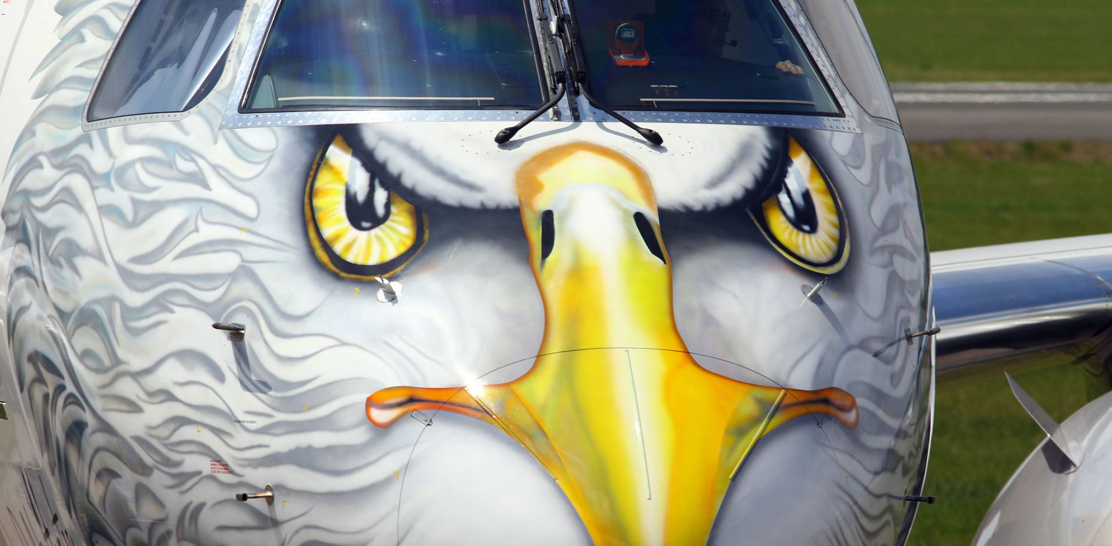 Front of plane with eagle face